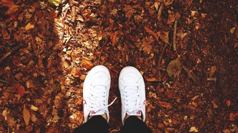 suelo otoñal con calzado blanco