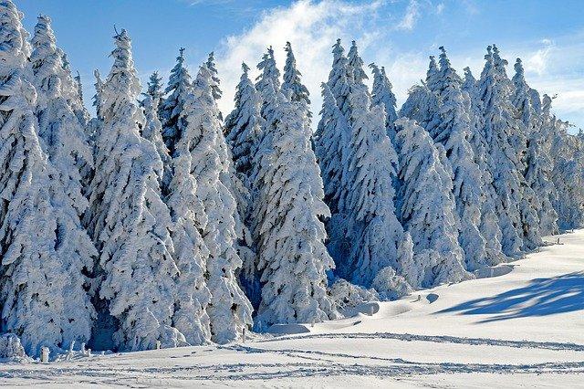 Imagen de un paisaje nevado.